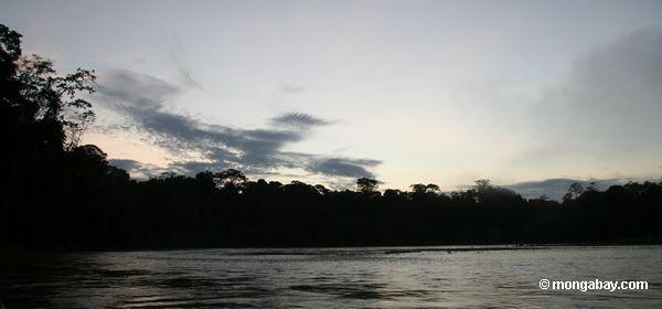 リオに沿って熱帯雨林にtambopata日の出