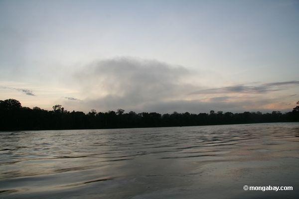 Восход над тропическими лесами вдоль Рио-Тамбопата