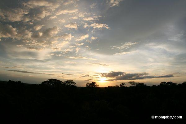 Sun setting over the Amazon rainforest in the Tambopata National Reserve. Photo by Rhett A. Butler / mongabay.com