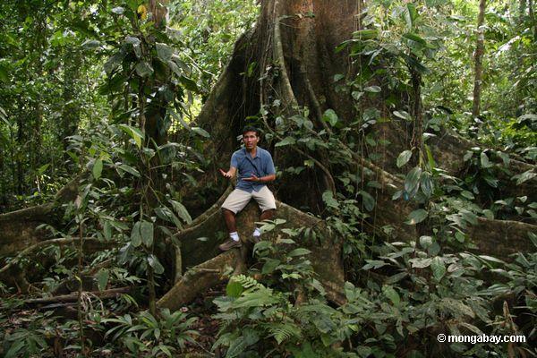 Oscar Mishaja, a guia a mais rainforest na região de Tambopata