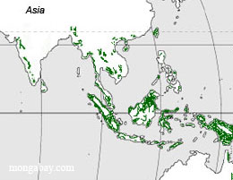 Asia forest map