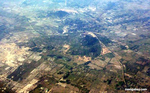 Abholzung, Kambodscha