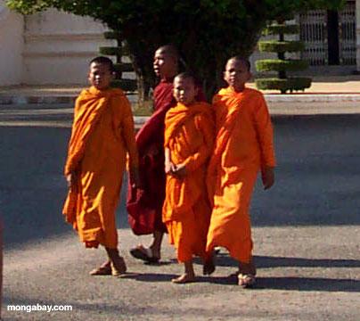 Mönche, königlicher Palast
