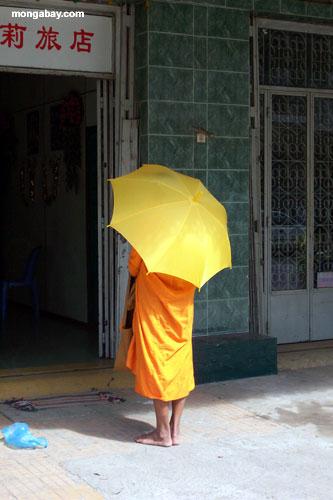 Monks, Phnom Pehn