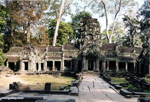 タprohm 、カンボジア