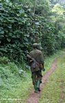 Armed park guard in Bwindi