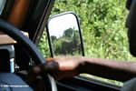 Elephants in the rearview mirror