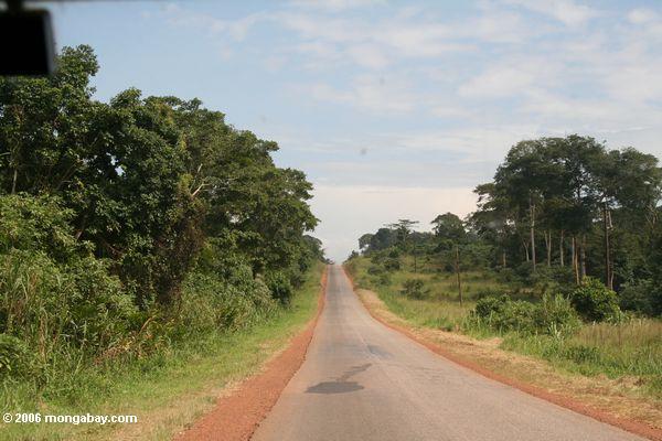 Landstraße in der Uganda
