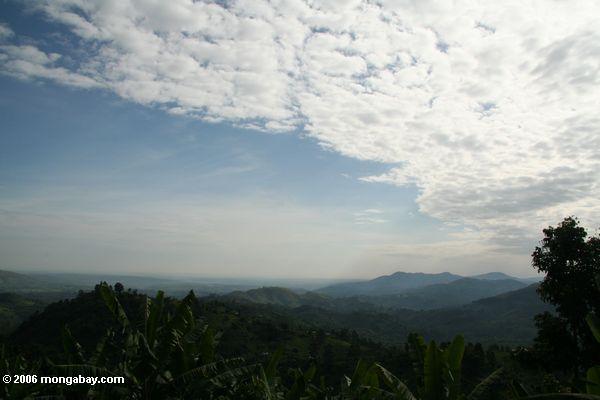 Os montes aproximam Bwindi