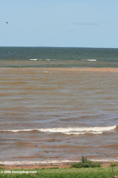 Ondas que quebram em uma praia de Victoria de lago