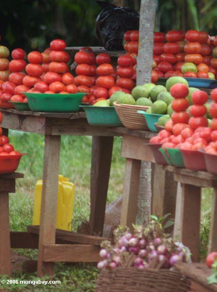 помидоры укладываются в придорожных fruitstand