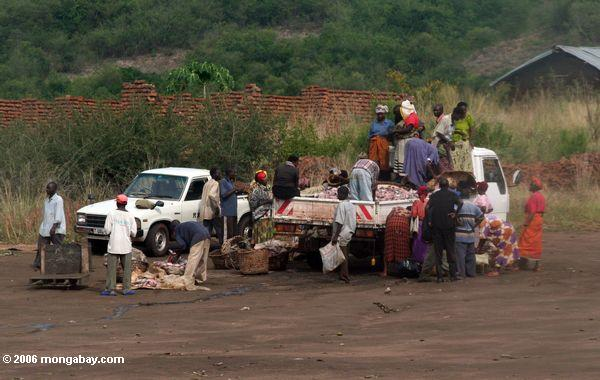 Truck fish market -- pickup delivering fish in Uganda