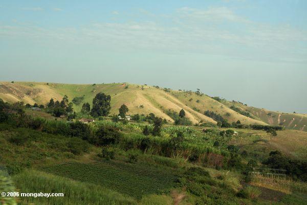 Gelöschte Hügel