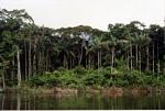 Former village site along the Carrao river in Venezuela