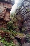 Crevasse on Auyantepui