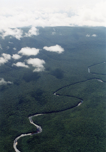 Luftaufnahme des Rios Carrao in Venezuela