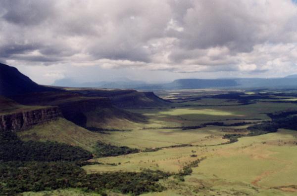 Rand eines Bereichs vor langer Zeit entwaldet von den Bergmännern in Venezuela