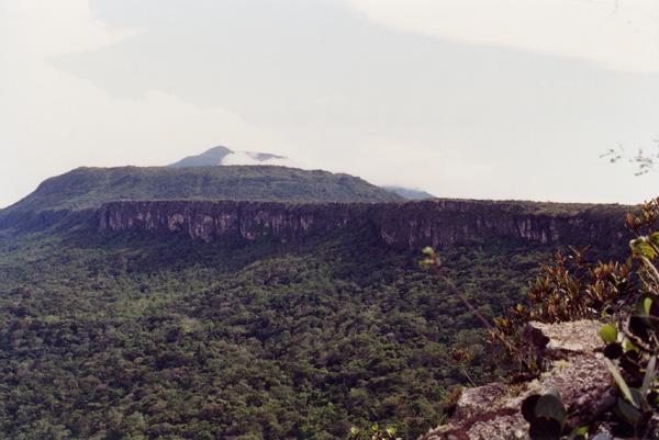 Скалы из auyantepui