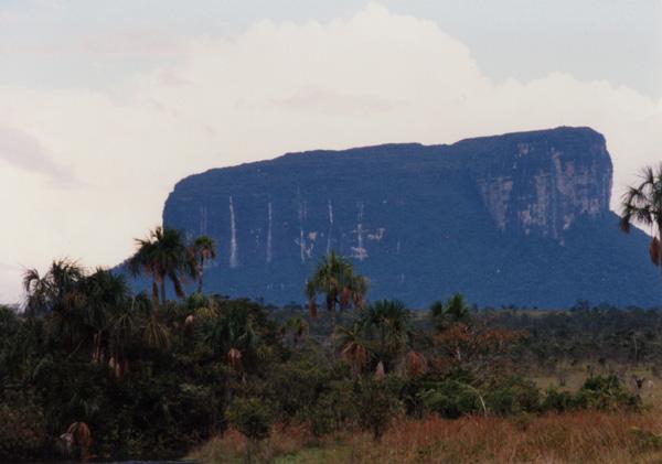 несколько водопадов заливки у сторон tepui в Венесуэле