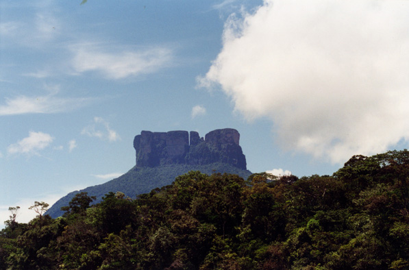 Tepui, or flat-topped mountain, in Venezuela. Photo by: Rhett A. Butler.