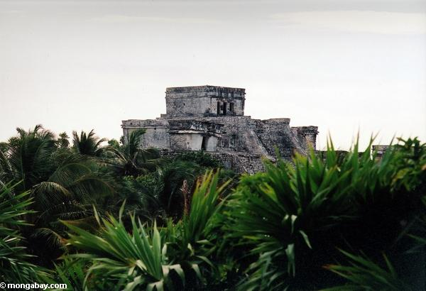The Maya city of Tulum. Photo by: Rhett A. Butler.