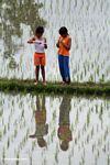Two girls in a rice field (Ubud, Bali)