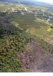 Aerial view of slash-and-burned forest near Pangkalanbun, Kalimantan (Kalimantan, Borneo (Indonesian Borneo))