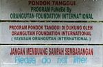 Sign for Pondok Tanggui, a conservation program funded by Orangutan Foundation International (Kalimantan, Borneo (Indonesian Borneo))