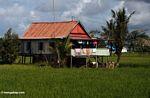 Sulawesi home outside of Makassar (Sulawesi (Celebes))