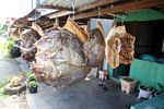 Dried fish market (Sulawesi (Celebes))
