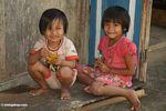 Little kids at Lemo (Toraja Land (Torajaland), Sulawesi)