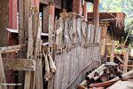 Sapi rahang menggantung di sepanjang pagar (Toraja Land (Tana Toraja), Sulawesi)