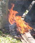 Fire (Toraja Land (Torajaland), Sulawesi)