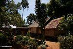 Toraja homes (Toraja Land (Torajaland), Sulawesi)
