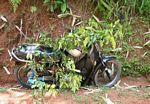 Motorbike covered with leaves to keep it cool (Toraja Land (Torajaland), Sulawesi)