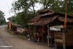 Roadside stall (Sulawesi (Celebes))
