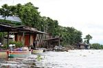 Riverside huts along river draining Lake Tempe (Sulawesi (Celebes))