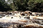 Rapids on the Tahan River