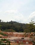 Mining in the Malaysian forest