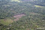 Aerial view of sections of rain forest felled for subsistence agriculture