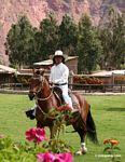 Peruvian cowboy