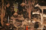 Offerings including human skulls; dead animals; and flowers