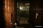 Guest room at Posada Amazonas; bathroom with shower