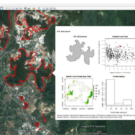 New map of Malaysia's limestone hills will help set conservation priorities